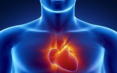 Avoiding Heart Disease for Life