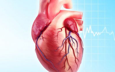 Battling Artery Disease and Stent Restenoisis