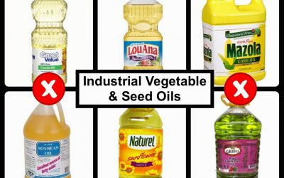Reasons Not to Use Industrial Seed Oils – P. D. Mangan