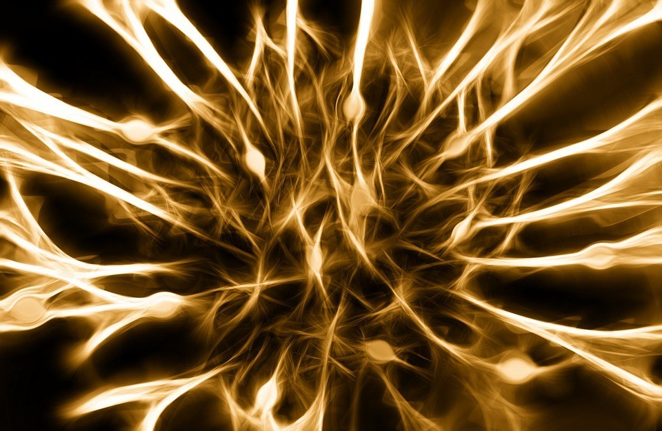Senolytic Therapy Improves Chemotherapy-Induced Peripheral Neuropathy